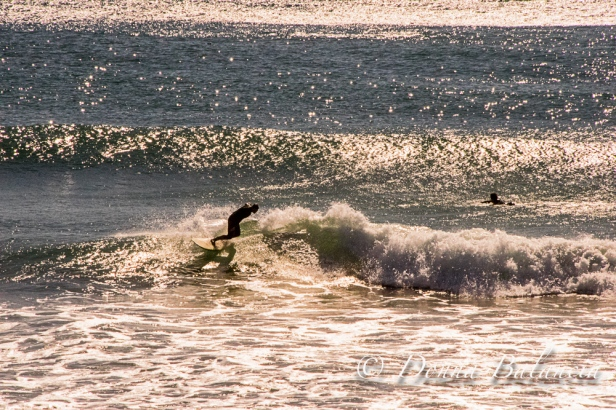 Windy or not, the surf is always fun in California - Photo © 2015 Donna Balancia