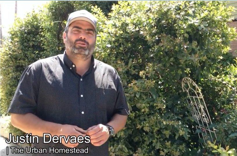 Justin Dervaes - Courtesy the Urban Gardener
